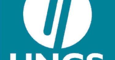 logo - ungs