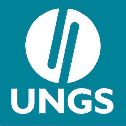 logo - ungs