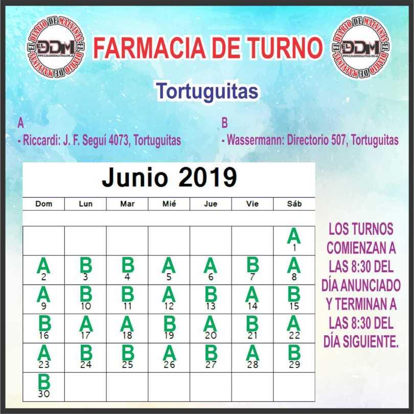 Mes de junio: Tortuguitas